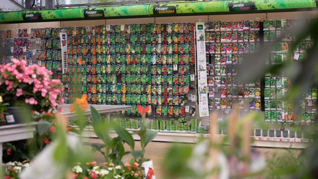 espace de plants de légumes